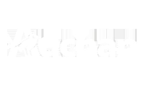 Auchan-w