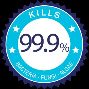 99%-eng