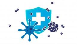 bacteria-shield